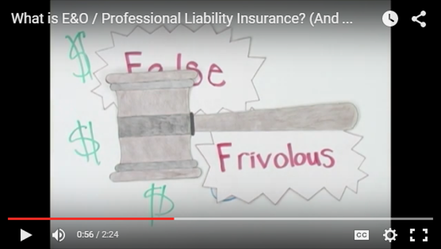 What is Professional Liability Errors and Omissions Insurance